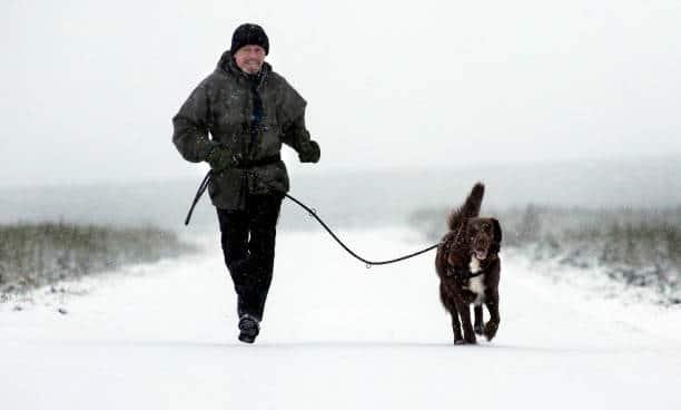 Voulez vous que votre chien soit particulièrement sportif (pour vous accompagner dans vos joggings matinaux par exemple) ?