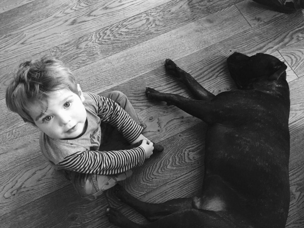 Un chien qui dort à côté d'un petit garçon